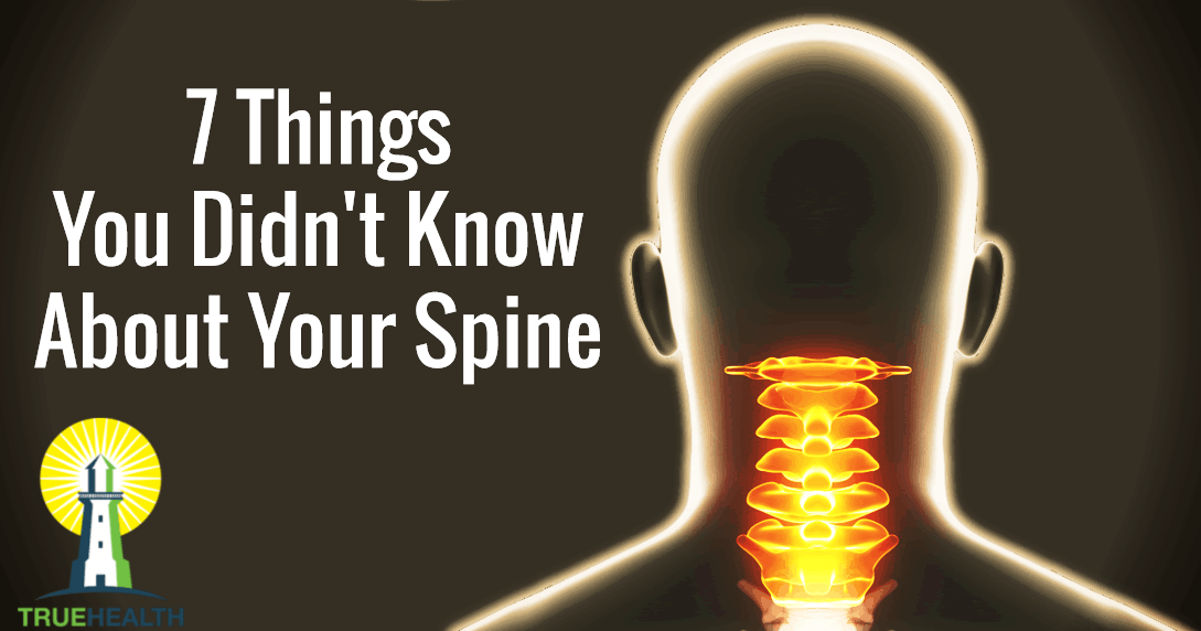 7 Things You Didn't Know About Your Spine