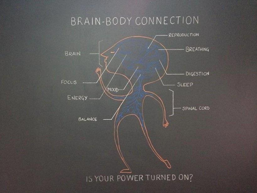 Brain-Body Connection   Stratford Shelton Oxford CT